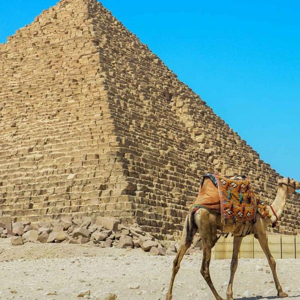 Cairo Day Excursion From Sokhna Port -Safaga Shore Excursions