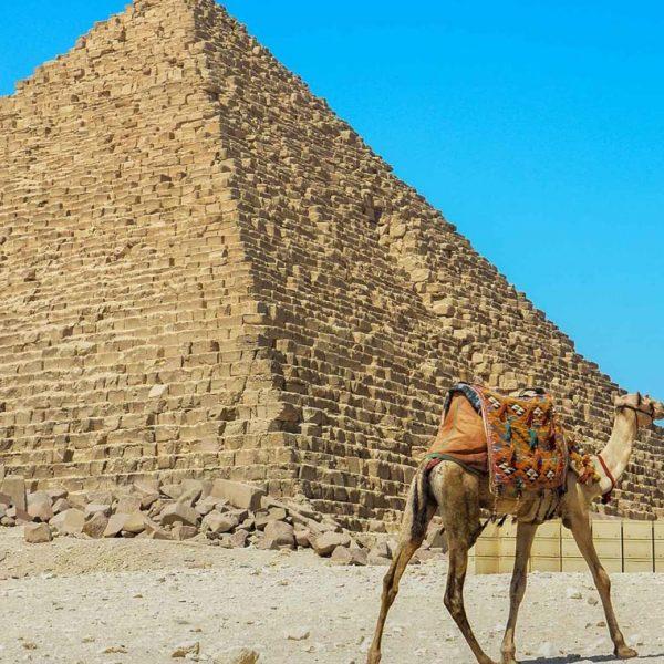 Cairo Day Excursion From Sokhna Port -Safaga Shore Excursions