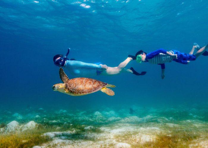 Snorkeling Excursion - Safaga Shore Excursions