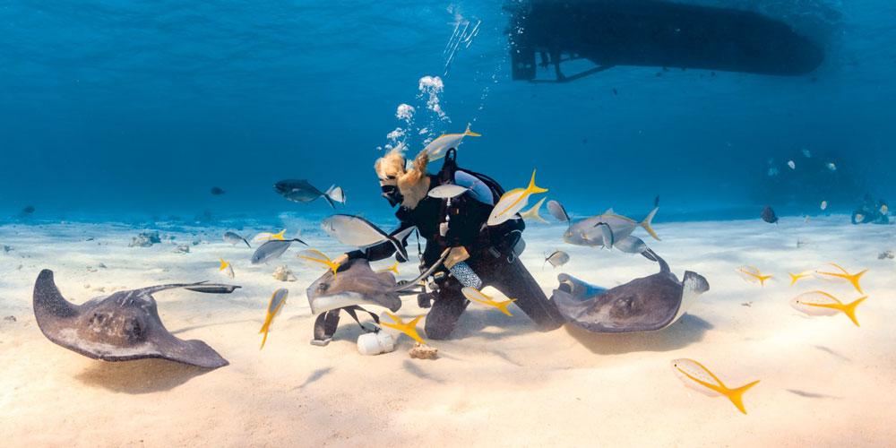 Diving Spots In Safaga - Safaga Shore Excursions