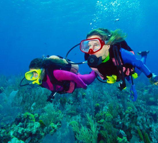 Top Things to Do in Safaga - Safaga Shore Excursions